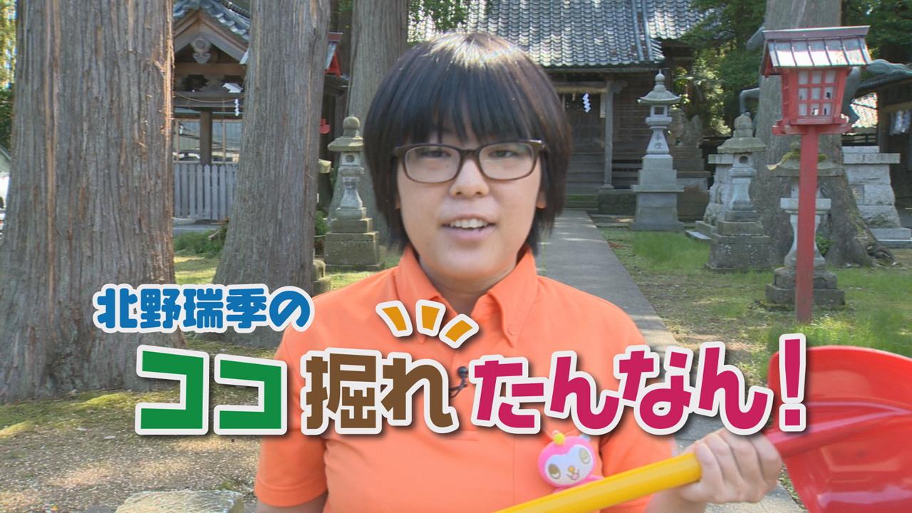 【北野瑞季のココ掘れたんなん!】鯖江市立待地区編